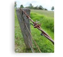 Barbwire Fence Canvas Print