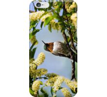 Hummingbird with Flowers iPhone Case/Skin