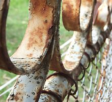 Old Rusted Gate by AmandaBentley16