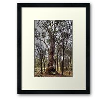Close To Death Framed Print