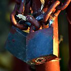 Padlocks by David Wanden