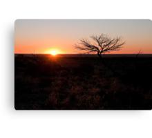 White Cliffs sunset Canvas Print