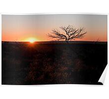 White Cliffs sunset Poster