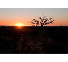 White Cliffs sunset Photographic Print