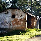 Once a home to someone.....@kodaikanal - India by marick
