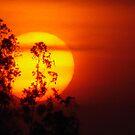 Sunset @ Mysore -  by marick