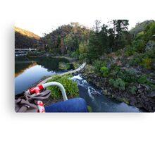 Beautiful Tasmania - Soaring across Cataract Gorge Canvas Print