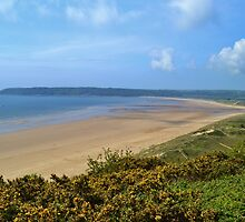 Nicholaston Burrows & Oxwich Bay, Gower Peninsula by Paula J James