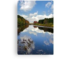 Long Pond Cloud Reflection NY Landscape Canvas Print