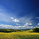 Fields Glow Yellow by GlennB
