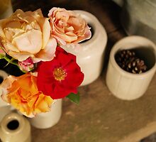 Rustic Roses by Fay Freshwater