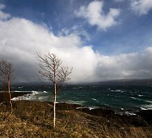 Stormy Weather by Bodil Kristine  Fagerthun