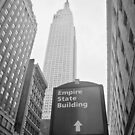 The Empire State Building, New York City by Ilker Goksen