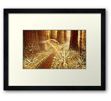 Inside Clover Grove Framed Print