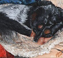 Portrait of Luna by Judy Bergmann