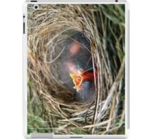 Baby Birds in Nest iPad Case/Skin