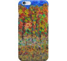 035 Fall Colors iPhone Case/Skin
