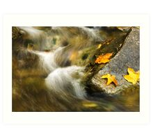 Peaceful Creek Landscape Art Print