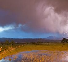 Lightning Striking Longs Peak Foothills 7 by Bo Insogna