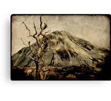 The Oratory Canvas Print