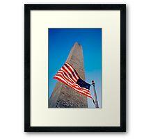 The Washington Monument, Washington DC Framed Print