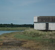 Shack on Marsh by MyPixx