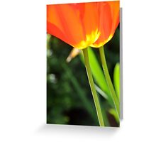 Portrait of Tulips Greeting Card