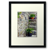 Stepping Up Framed Print