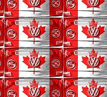 CANADIAN VW by benbdprod