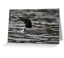 First Loon of the Season Greeting Card