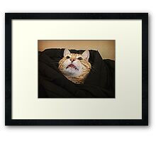 It's Monday? Framed Print