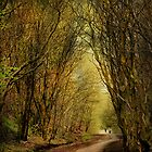 The Long Winding Path . by Irene  Burdell