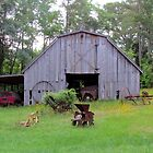 Barn And Farm Equipment by Cynthia48