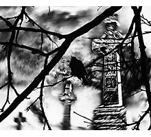 Sing Your Song Darkly Photographic Print