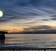 Sunset on Seattle by Shannon  Torrey