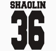 Shaolin 36 by fysham