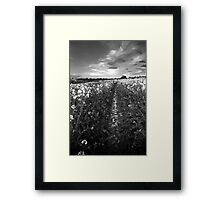 Tread Carefully BW Framed Print