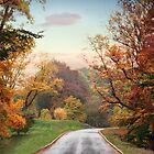 Country Road by Jessica Jenney