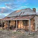 Country Side Ruin by Shannon Rogers