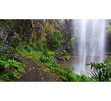 Waterfall, Springbrook National Park, QLD Photographic Print