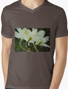 A collection of rising Daffodils Mens V-Neck T-Shirt