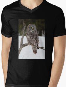 Great Grey Owl portrait Mens V-Neck T-Shirt