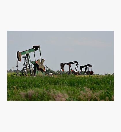 Oil Well Pumps Photographic Print