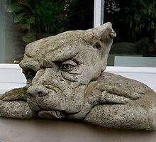 British bulldog by highhopes2