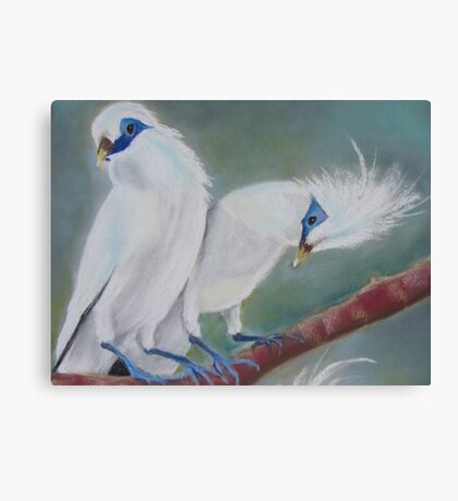 Mynah Sweethearts Canvas Print