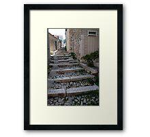 path croatia Framed Print