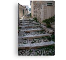 path croatia Canvas Print