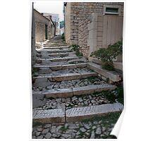 path croatia Poster