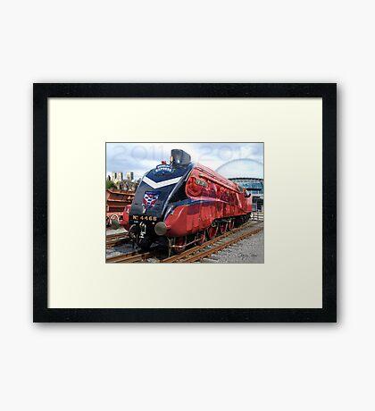 York City FC - Promotion Train 2011-2012 Framed Print