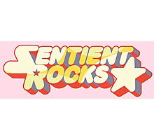Sentient Rocks Photographic Print
